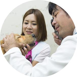犬と猫の病気